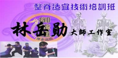 中华整脊正骨适宜技术培训班